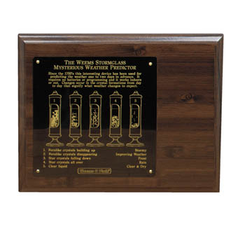 Stormglass Display, 8x10 Wood Display with engraved plate for #200